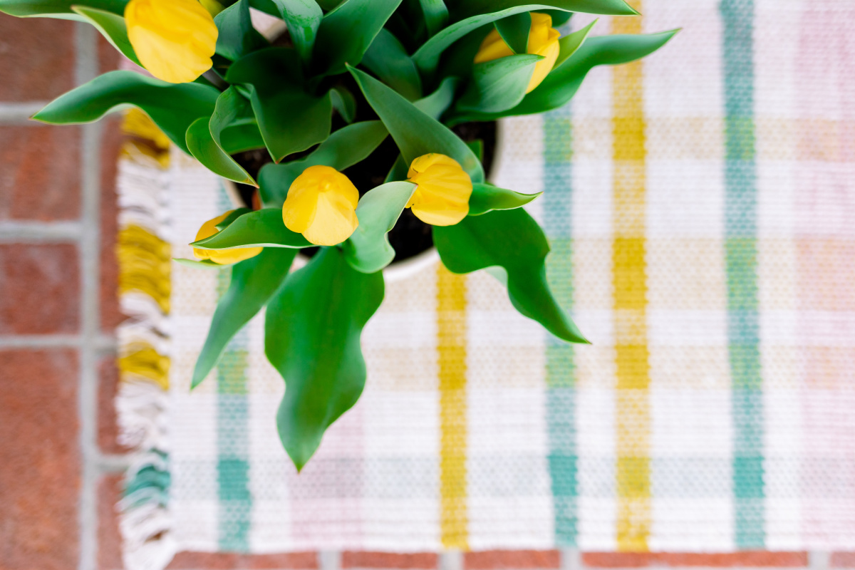 Yellow Tulips on Pastel Plaid Mat