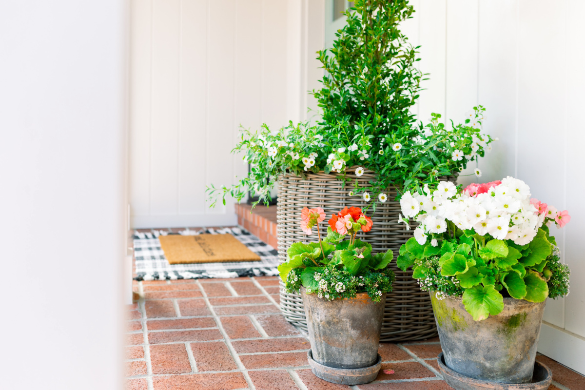 Front Porch Topiary and potted plants