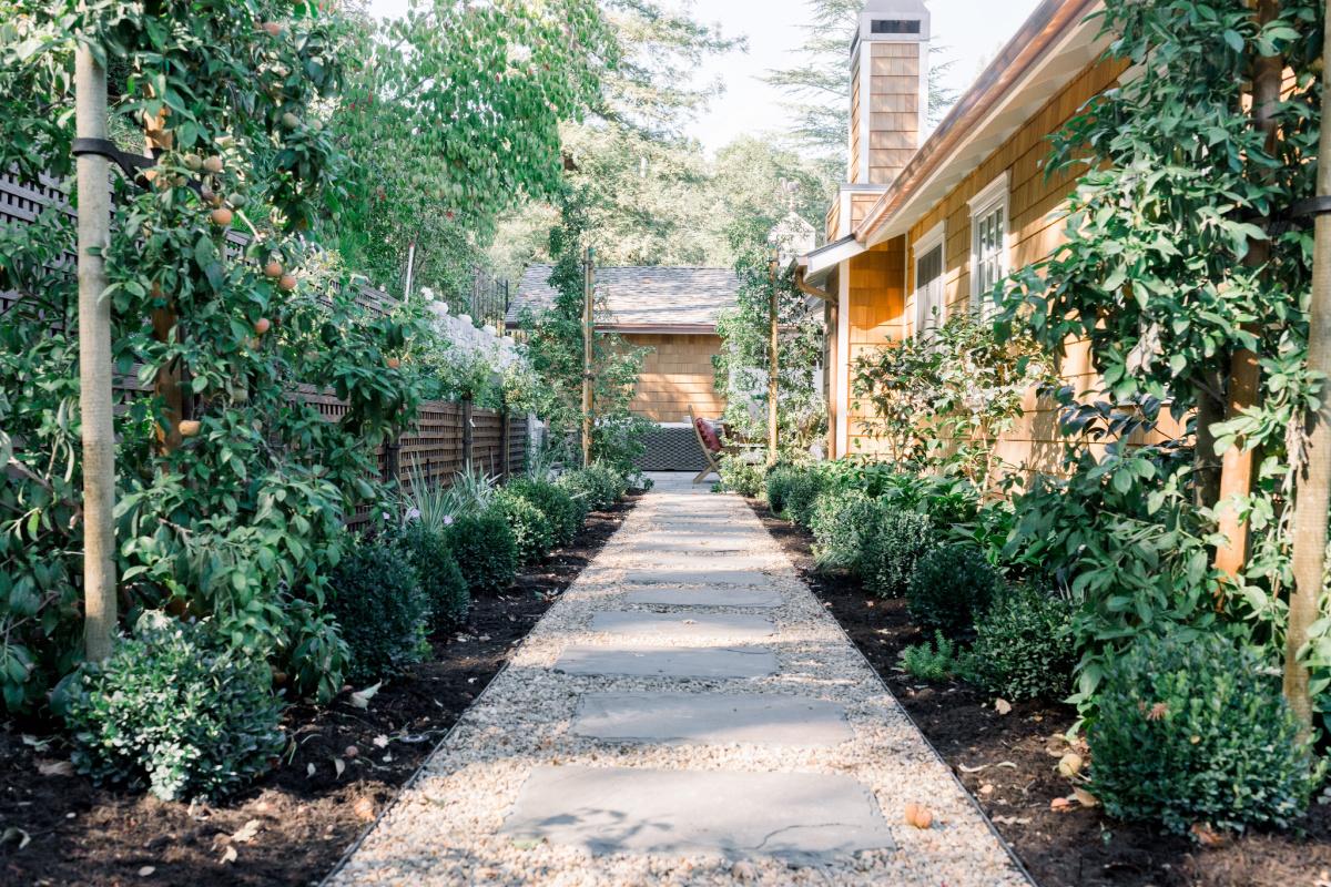 Garden Path and boxwood border