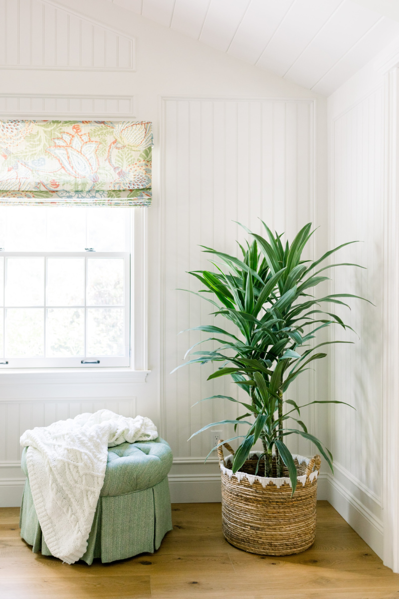 Plant in woven basket next to ottoman